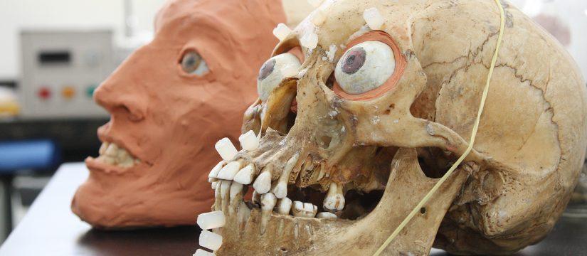 la odontología forense